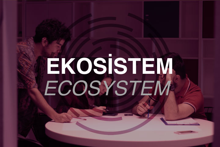Ecosystem Related Work